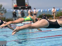 Competition. For swimming women in summer Stock Photos