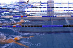 Competition. Boys competing in a swimming breaststroke contest Stock Photos