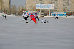 Competition for bandy. Russian Premier League match ball hockey:  Lokomotiv  Orenburg  Universal  Saratov Stock Photography