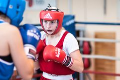 Competition Boxing between girls Royalty Free Stock Photos