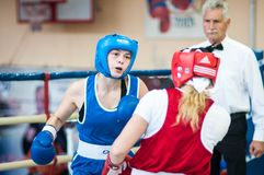 Competition Boxing between girls Stock Images