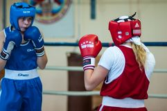 Competition Boxing between girls. Stock Photos