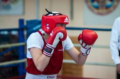 Competition Boxing between girls. Stock Images
