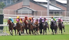 Competition in horse racing. Photo took in Hongkong horse racing club, Oct 25, 2015 Royalty Free Stock Photo