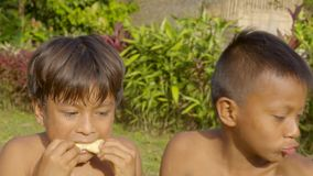 Indigenous children eating sugarcane in the jungle. Competition of indigenous children eating sugarcane in the jungle in Ecuador stock footage