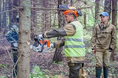 Competition of professional skill `Woodcutter` in the Kaluga region of Russia. July 11, 2019 in the Kaluga region held a competition of professional skills ` stock photo