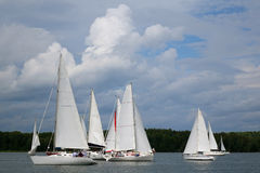 Competition sport of sailing. Stock Images