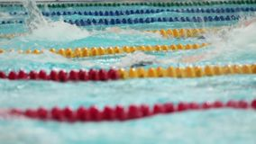Competition in sports swimming stock video
