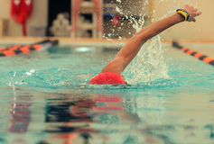 Competition swimmer. Head on view of a competition swimmer Royalty Free Stock Images