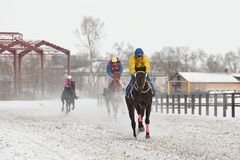 Winter. Races on the racetrack. Competitions in equestrian sport in the winter. Tests of horses for speed speed. Khakassia. Siberia Royalty Free Stock Images