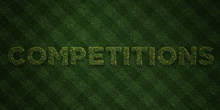 COMPETITIONS - fresh Grass letters with flowers and dandelions - 3D rendered royalty free stock image. Can be used for online banner ads and direct mailers Stock Photography