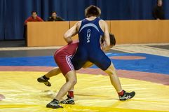 Competitions in Greco-Roman wrestling in Orenburg, Russia Royalty Free Stock Images