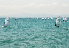 Competitions sailing in the bay of of Pomorie in Bulgaria Stock Photography