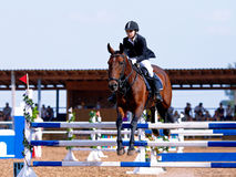 Competitions on a show jumping. royalty free stock photography