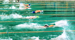 Competitions in swimming pool Stock Photography