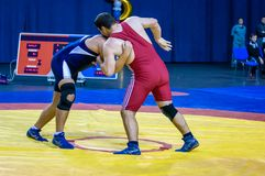 Competitions on wrestling Royalty Free Stock Photography