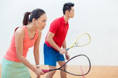 Competitive Chinese woman holding the racquet during a squash game. Side view of a beautiful and competitive Chinese women holding the racquet while looking Royalty Free Stock Photo
