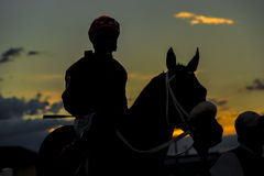 Competitive Horse Racing. Images of horses and their riders at a horse race Stock Image