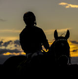 Competitive Horse Racing. Images of horses and their riders at a horse race Royalty Free Stock Photography