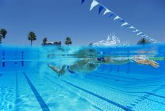 Competitive Male Swimmer Stock Images