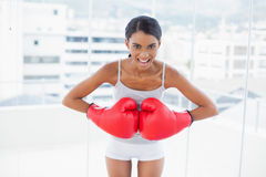 Competitive model wearing red boxing gloves Stock Images