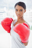 Competitive serious model wearing red boxing gloves Stock Photography