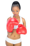 Competitive serious woman wearing red boxing gloves Stock Photos