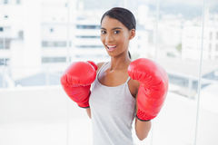 Competitive smiling model wearing red boxing gloves Stock Photography