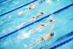 Competitive Swimming Royalty Free Stock Photo