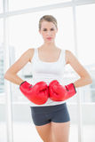 Competitive woman with red boxing gloves posing Stock Image