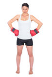 Competitive young model with boxing gloves posing Royalty Free Stock Photos