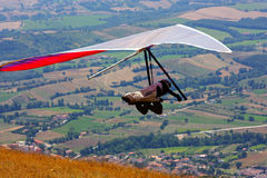 Competitor of the Dutch Open-2010 hang gliding com Stock Photos