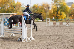 Competitor in show jump taking her course Royalty Free Stock Photos