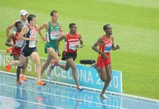 Competitors of 5000m Men Stock Image