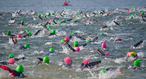 Competitors swimming out into open water at the beginning of Triathlon. Stock Photography