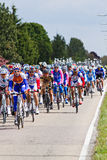 Competitors and teams in Giro d'Italia 2010. DELFGAUW, NETHERLANDS - MAY 10: Competitors and following teams in the Giro d�Italia passing by on a polderroad Stock Photos