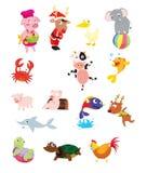 compilation animale Photographie stock libre de droits