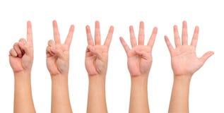 Compilation des mains Image libre de droits
