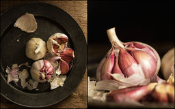Compilation of images of Fresh raw garlic in moody natural light Stock Image