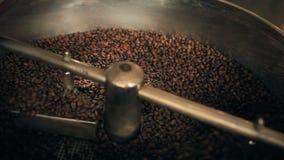 Compilazione dei chicchi di caffè organici video d archivio