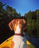 Compinche Kayaking Foto de archivo