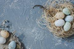 compisition пасха Пасхальные яйца с украшением пасхи, взгляд сверху скопируйте космос Стоковое Изображение RF
