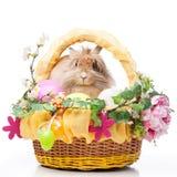 Compisition di Pasqua Fotografie Stock