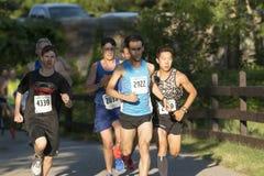 Compita líderes na série 5K do verão do lago Belmont fotos de stock royalty free