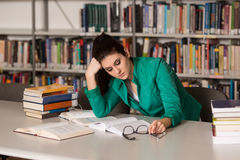 Compito femminile di Stressed About Her dello studente di college Fotografie Stock Libere da Diritti