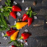 Complétez vers le bas des poivrons de piment jaunes et d'un rouge ardent, sel de mer, la verdure, j Images stock