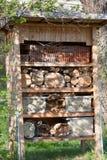 Complejo de la casa en el árbol de nidal de la abeja Fotografía de archivo
