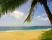 Complejo playero tropical Imagenes de archivo