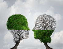 Complement Each Other. Concept as two trees with half of the tree with full leaves and the other with none as a business or life metaphor for synergy and Royalty Free Stock Photos