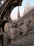 Complessità gotiche immagini stock